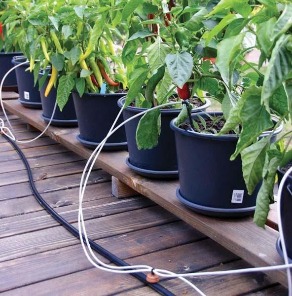 Bewässerungssystem für Balkon und Terrasse