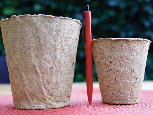 Anzuchttöpfe rund, 11 cm (12 Stück)