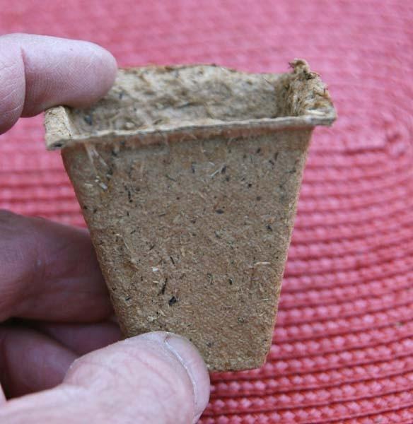 Anzuchttöpfe eckig, 5 cm (36 Stück)