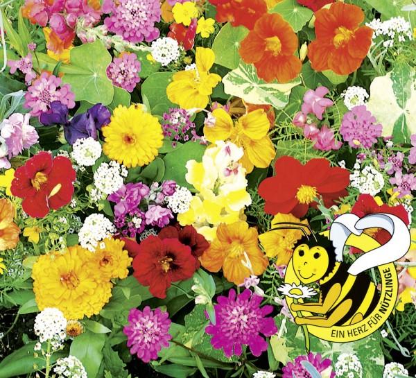 Last Minute Blumenmischung