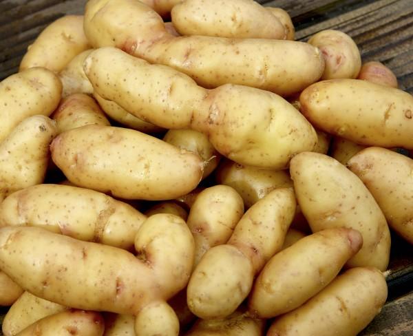 Hörnchen Kartoffel, 1 kg