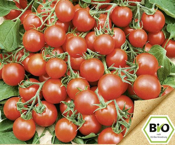 Wildtomate Rote Murmel (Bio Saatgut)